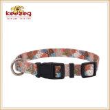 De nieuwe Halsbanden van de Kat van de Stijl Mooie Nylon voor Kleine Huisdieren, Leiband die afzonderlijk (KC0095) aanpassen