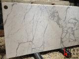 カウンタートップのためのイタリアの高品質の建築材料のCalacattaの自然な石造りの大理石の平板