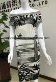Vestito da stampa della pittura della lavata di semplicità per le donne