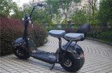 2016方法新しいデザイン2車輪の電気スクーター都市ココヤシ