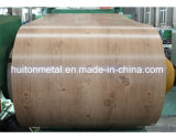 나무로 되는 디자인 PPGI/PPGL 강철 코일
