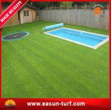 プールのまわりの柔らかい人工的な草