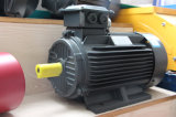 Motor eléctrico trifásico de la alta serie qualityY2