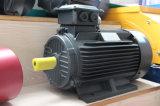 Motor elétrico trifásico da série qualityY2 elevada