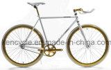 عادية توتّريّ وحيد سرعة نمو يتسابق درّاجة/نقطة معيّنة ترس درّاجة [س-فإكس70020]