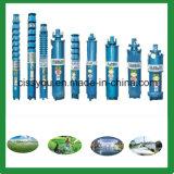 6 \ 8 \ 10 Zoll Wasser-versenkbare tiefe wohle Pumpen für Berieselung
