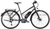 Bafang最大中央モーターシステム/E-Bike/Electric都市バイク(SY-E2814)が付いている700c中間モーター電気バイク