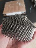 Clous de bobine assemblés par plastique de l'acier inoxydable SUS304