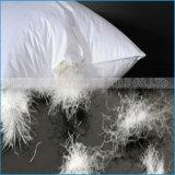 중국 공장 판매 기털 베개의 아래 세척되는 100%년 면