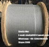 """ASTM un codice categoria di 475 Ehs un 1/4 """", 3/8 di """", del 5/16 """", di 1/2 """" di acciaio di filo galvanizzato del filo"""