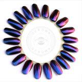 構成キットの真珠カラー粉のマニキュアのつま先の芸術