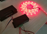 Tira flexible SMD5050 60 LED de DC12V 24V LED por el contador, RGBW/Ww