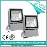 Luz de inundación de la serie 10W LED del diamante IP65 (WQ-FL)