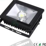 Lampada bianca calda 50W dell'Progetto-Indicatore luminoso dell'obiettivo di paesaggio del proiettore di IP65 LED