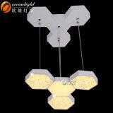 현대 샹들리에 장식적인 실내 LED 펀던트 전등 설비 Om88562-12