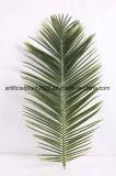 Искусственное листво листьев пальмы даты