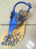 Nueva señora Casual Sandals, deslizadores de la llegada del PVC con precios bajos, varios fracasos de tirón del diseño (FFLT1017-05)