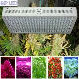 Las plantas al por mayor LED del precio bajo 1200W de la fábrica crecen la iluminación