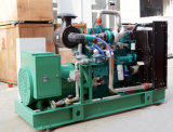 250kVA type insonorisé générateur de gaz naturel