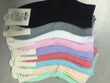 Heiße Verkaufs-Qualitäts-Frauen-bunte Baumwollsocken
