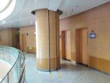 Панель стены винила с Antibacterial и предохранением от удара