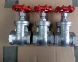 Válvula de porta do aço inoxidável da extremidade de Pn16 NPT