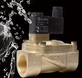 Gebildet Methoden-dem Magnetventil in der China-Produkt-2V250-25 2/2