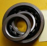 Roulement à rouleaux cylindrique de Nup310en SKF, NSK, NTN, NACHI, IKO