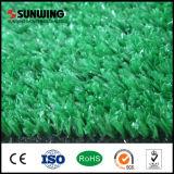 لأنّ [فيفا] يوافق مرج اللون الأخضر كسا بزربيّة عشب اصطناعيّة بلاستيكيّة لأنّ وقت فراغ مكان