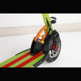 36V 400watt Brushless Motorの中国Hot Green Electric Scooter