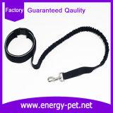 Multi guinzaglio del cane nero di funzioni