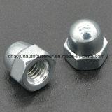 Porca de tampão de nylon Hex do ferro do aço de carbono (CZ091)