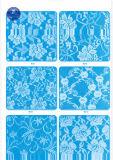 Het Kant van de wimper voor Kleding/Kledingstuk/Schoenen/Zak/Geval J033 (breedte: 4.5cm23cm)