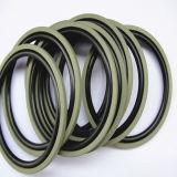 Fábrica produciendo los anillos hidráulicos de Glyd del pistón de PTFE