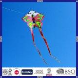 2016 de Gloednieuwe Promotie Vliegende Vlieger van het Ontwerp