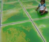 2015 telhas de assoalho líquidas Vitrified Non-Slip da venda quente