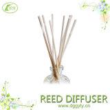 10 Jahre Fabrik-Großverkauf Größe Customized Rattan Diffuser Reeds