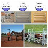 Используемое Cattle Panels (с ISO9001 & SGS)
