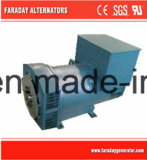 AC Alternator Bearing Single или Double Bearing Generator Faraday
