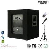 12 Zoll hölzerne Lautsprecher-Systems-mit PA-System