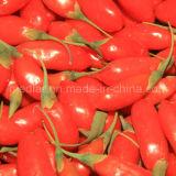 Травы красное высушенное Gojiberry Lbp мушмулы эффективные