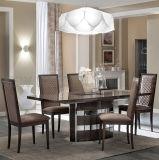 Los muebles italianos de la nueva manera utilizaron a casa la cena del conjunto (NK-DT209-1)