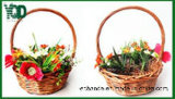 Bamboo Color Wicker Basket, Storage.를 위한 Good 작은과 Young
