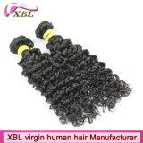 Armure de cheveux bouclés de Vierge de fabricant de cheveux de Xbl en Chine