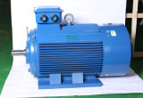 80mm-355mm Frame High Efficiency Three Phase Induction Motor