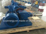 큰 Flow 및 Medium Pressure LNG Liquid Oxygen Nitrogen Argon Carbon Dioxide Piston Pump