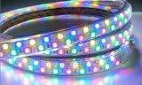 Indicatore luminoso esterno di SMD 5050 flessibili bianchi caldi LED