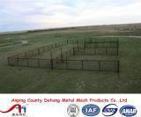 5ftx12FTの頑丈な使用された家畜のパネル/アメリカの牛畜舎のパネル