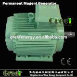 220V generador de imanes permanentes, bajo número de revoluciones del generador de CA