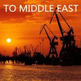 Carga a Ajman, UAE del mar del envío, océano de China
